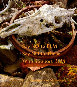 say no to blm