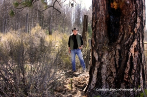 john tree header