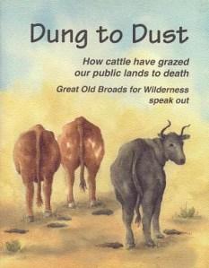 dungtodust